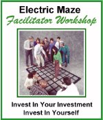 Electric Maze Facilitator Workshop Brochure